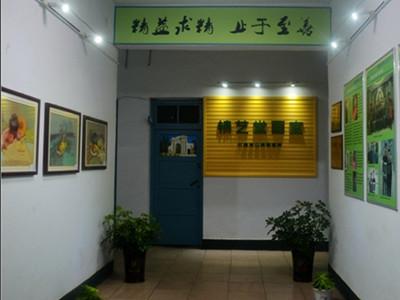 安阳精艺堂画室-安阳地区成绩第一的画室,高考美术培训,安阳画室,安阳美术学校