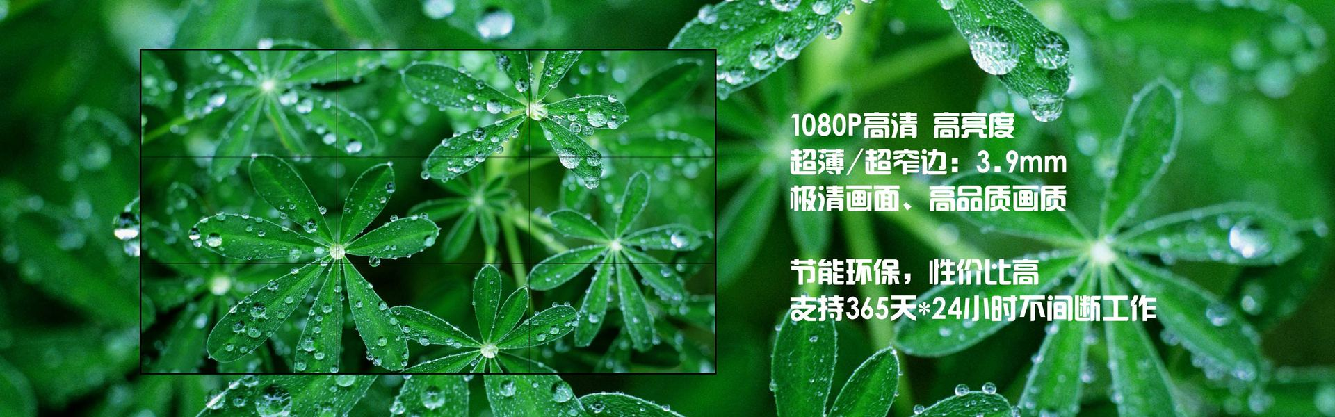 湖北专显网站首页形象图一