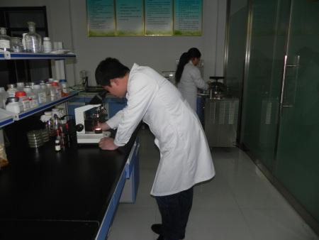 实验室、厂房