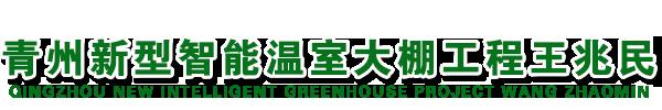 青州新型智能温室大棚工程王兆民