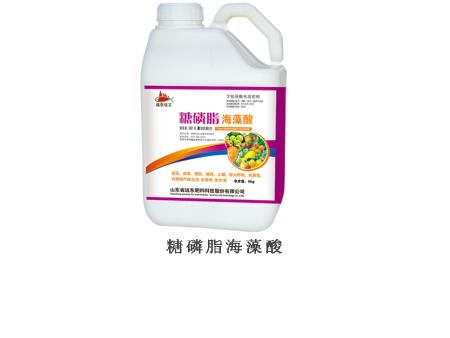 糖磷脂海藻酸