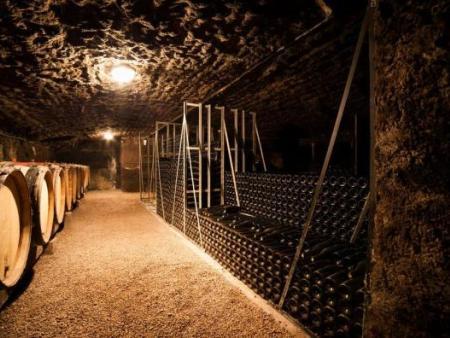葡萄酒庄的发展前景和葡萄酒设备的配置