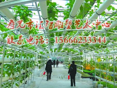 农业无土栽培模式建设