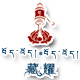 山东藏耀生物科技有限公司