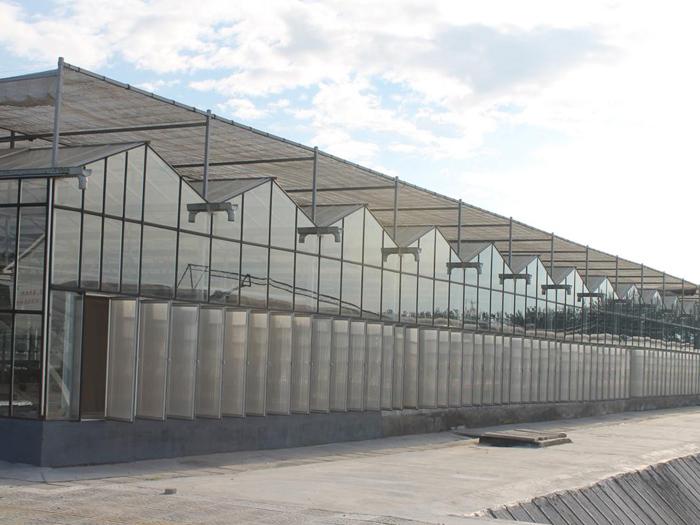 潍坊仟艺温室工程有限公司