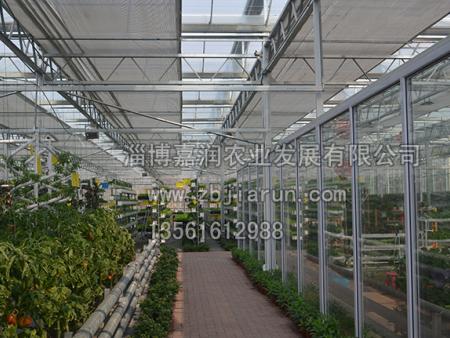 蔬菜大棚建设有什么注意事项呢?