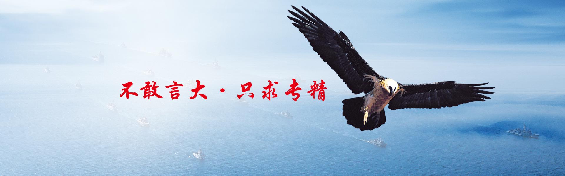 大兴彩票创建于1991年1月,公司位于广东省肇庆市端州区信安大道沙湖工业区,厂房面积约2万平方米,年生产电机1500万台。