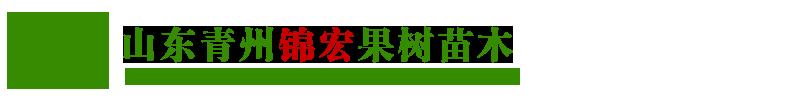 山东青州锦宏果树苗木