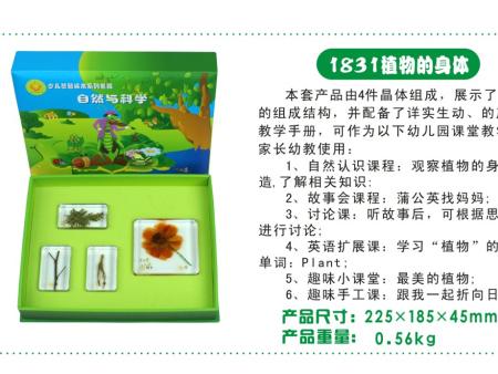 西安碧海彩立方注册教学设备有限公司-标本