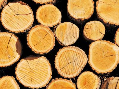 蘭州金晟強建材有限公司(13993123888)以經營木材|板材|防腐木|特殊圓木|建材為主|專業向建筑公司及建筑承包商提供架桿管|碗扣租賃|木材定制加工等業務