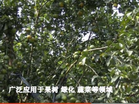 果树施用12bet博手机客户端