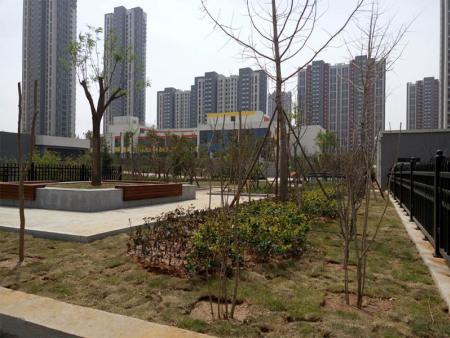 园林景观绿化施工