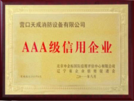 消防公司荣誉资质