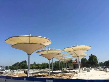 景观膜结构工程维护要求