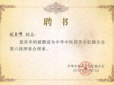 中华中药医学会第六届理事