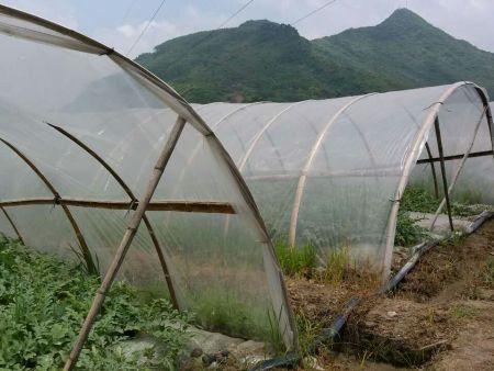 温室大棚膜,优质农用膜生产厂家直销