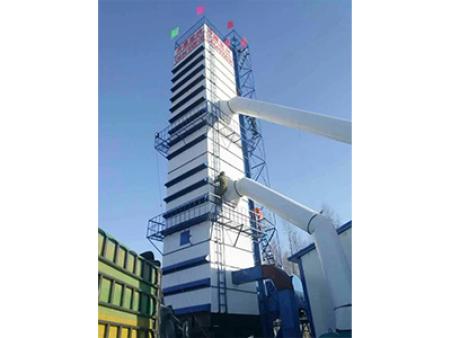 吉林省长岭200吨粮食亚虎个人娱乐中心塔