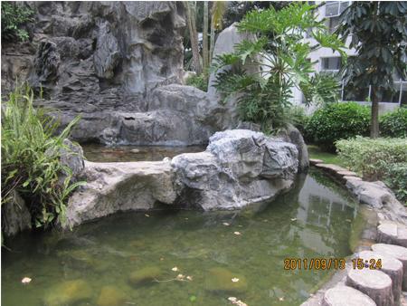 庭院微景观布置