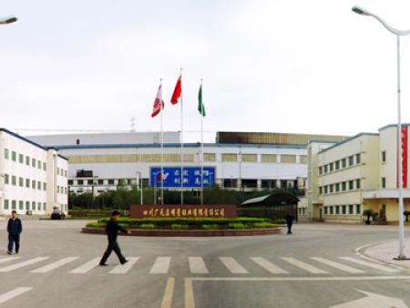 南阳博兴公司鳞片竞博|唯一官网为四川电解铝公司发展添砖加瓦