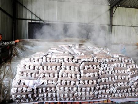 浙江金华确立食用菌产业提升发展战略目标