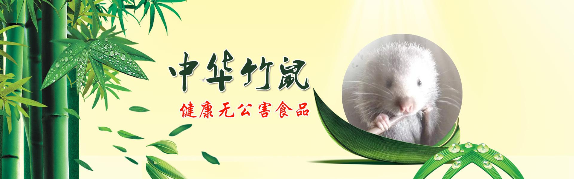 广西中华竹鼠