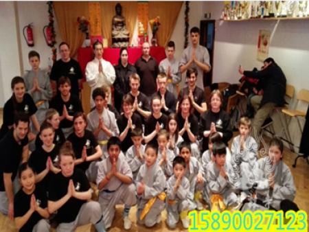 海外少林文化中心贺新春、传递新年祝福