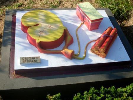 反射弧模型-细菌模型