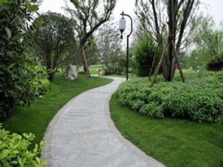 道路绿化景观