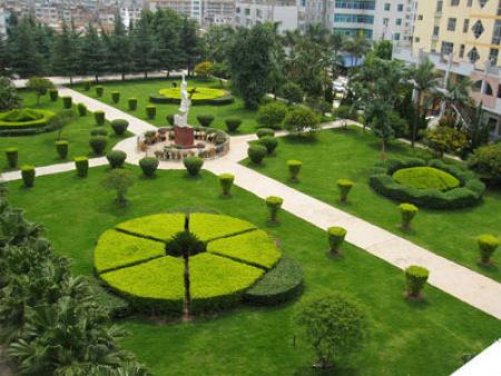 广场绿化景观