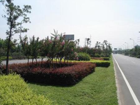 www.澳门太阳城2007.com