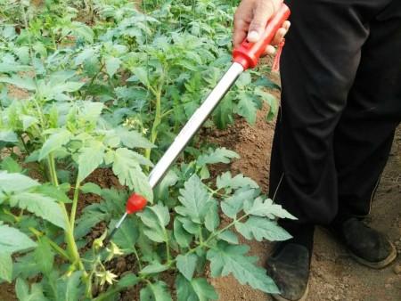 早春蔬菜大棚技術管理的關鍵點!!你都了解嗎???