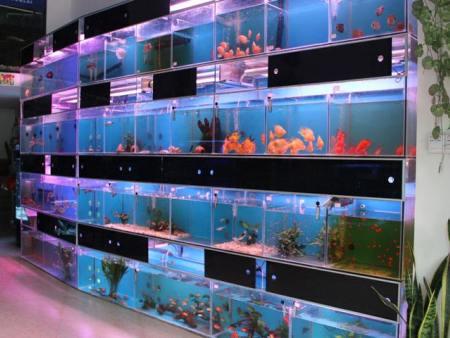 西安玻璃鱼缸定做