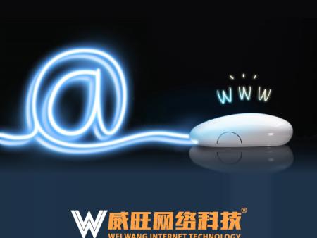 威旺网络科技