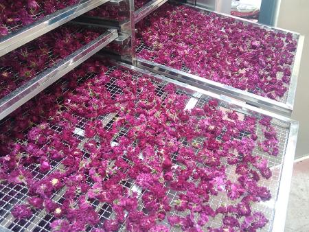 玫瑰花烘干机