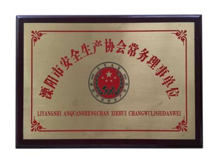 溧阳市 安全生产协会常务理事单位