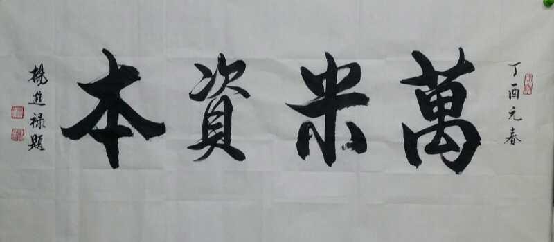著名书画家杨进禄,凤凰书画院院长为万米资本有限公司题《万米资本》