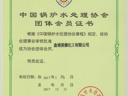 中国锅炉水处理协会团体会员证书
