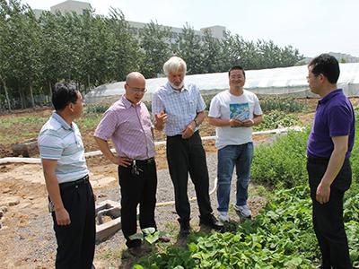 寿光唯根斯种业有限公司-农作物种子_品种研究与开发_增产增收