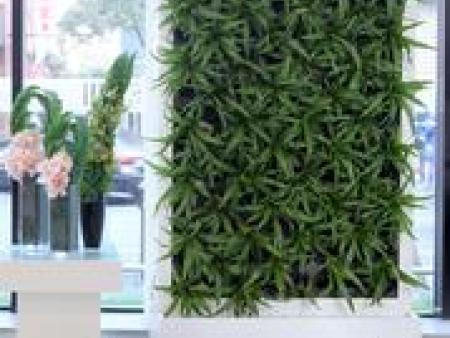 室内屏风植物墙