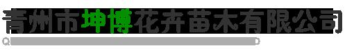 青州市坤博花卉苗木有限公司