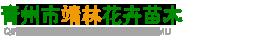 青州市靖林花卉苗木
