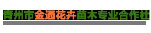 青州市金通花卉苗木专业合作社