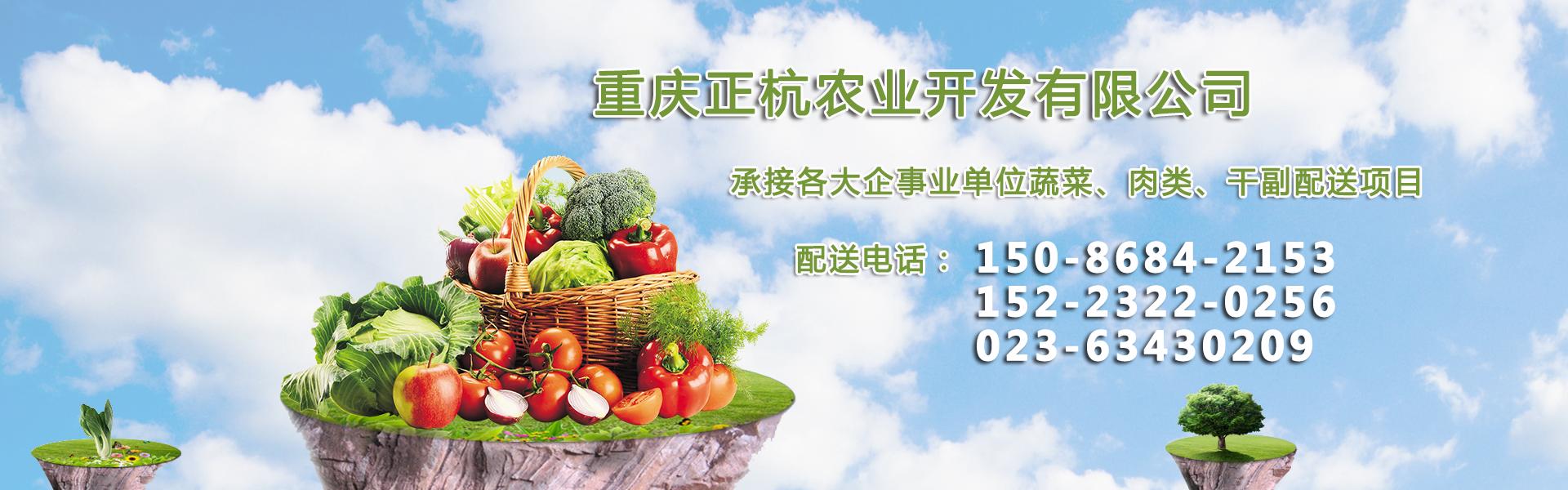 企业单位的食堂蔬菜提供配送服务
