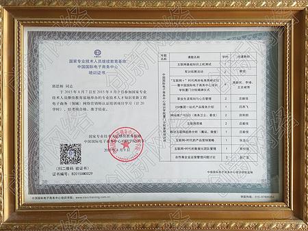 中国国际电子商务培训证书