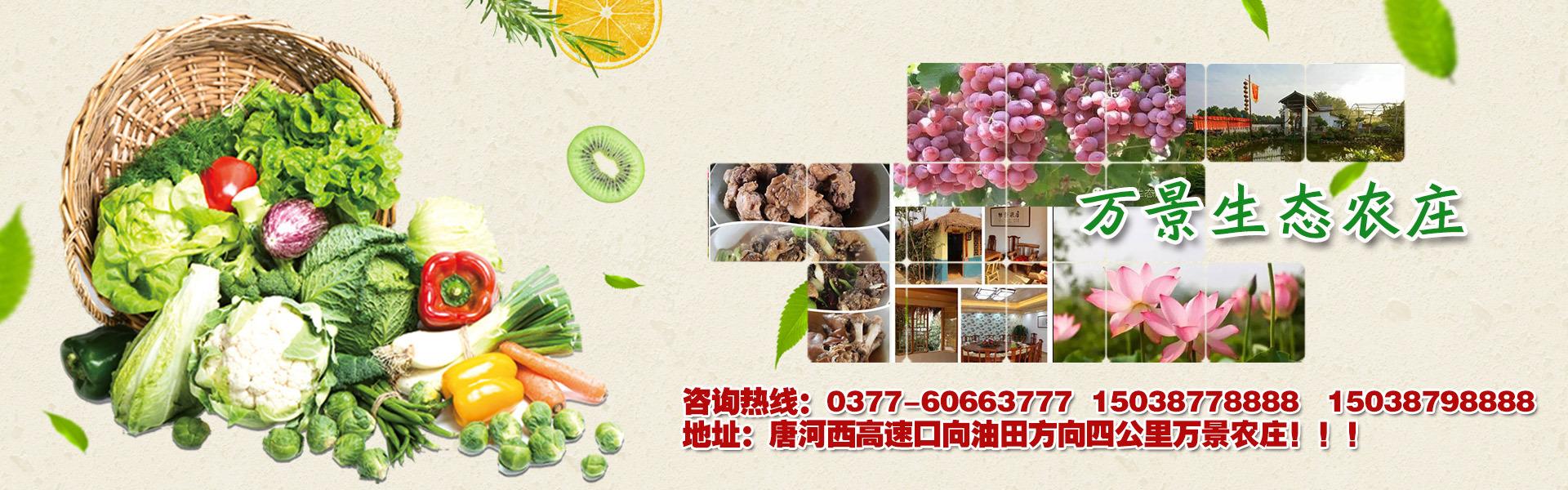 www.318am太阳城