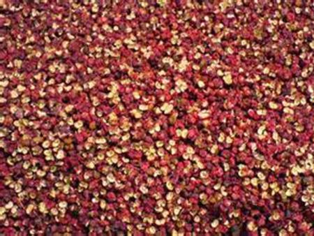 红麻花椒原料加工服务方:花椒竟然还有药用功效?