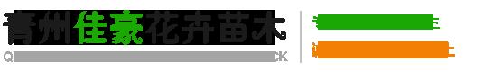 青州佳豪花卉苗木