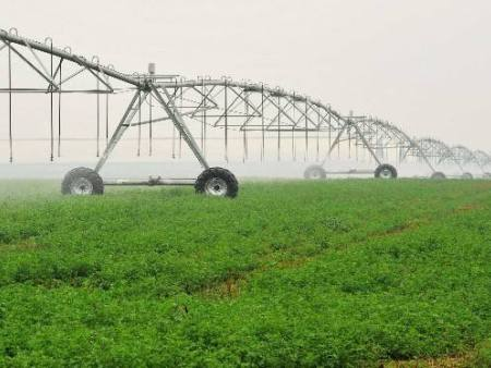 六项新型肥料标准下月起开始实施