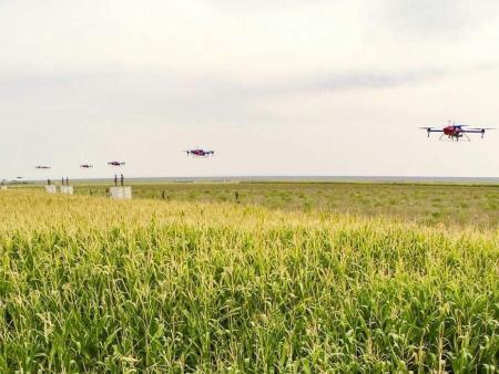 新《农药管理条例》有助于管理体制完善