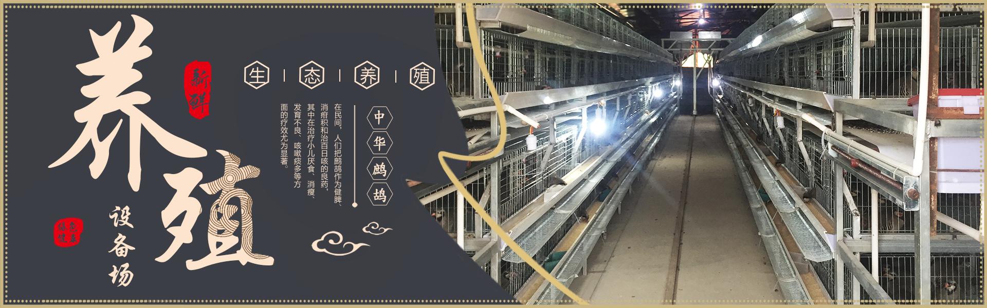 四會市李斌鷓鴣種苗養殖基地位于廣東省四會市市下布村,重點發展技術含量較高,市場前景廣闊的鷓鴣養殖,孵化種苗生產項目。